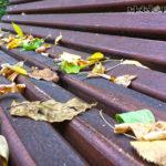 otoño cuenca01
