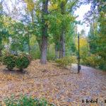 otoño cuenca04