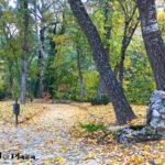 otoño cuenca07